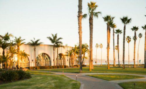 Top 5 Best Online Ph D  in Psychology Degree Programs 2017